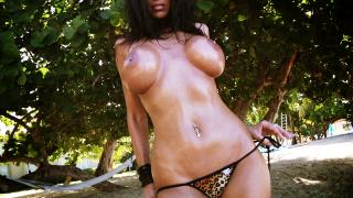 Dylan James busty bikini model topless