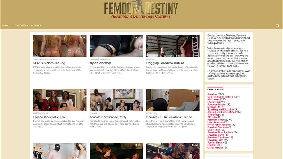 femdom screen 2
