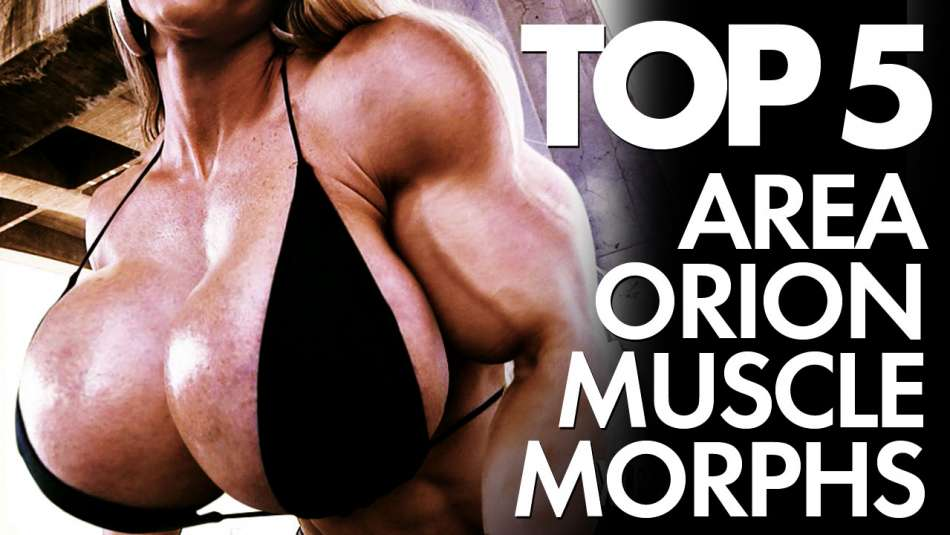 top 5 muscle girl morphs from area orion top images